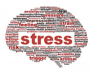 Helping Kids Cope With Stress – Parent Engagement Evening